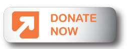 Donate-Now-Web-Icon